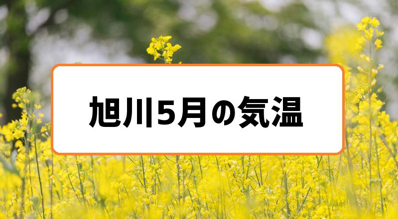 旭川5月の気温