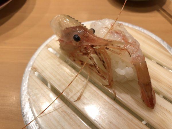 回転寿司活一鮮ぼたんえび