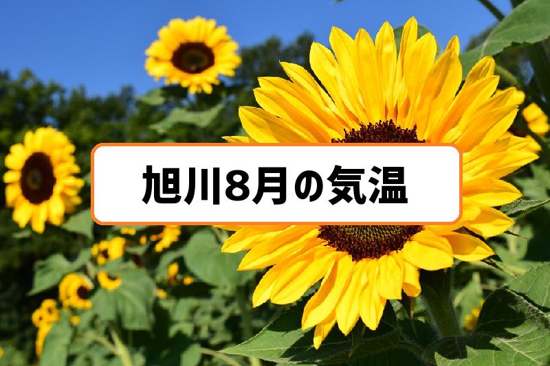 旭川8月の気温