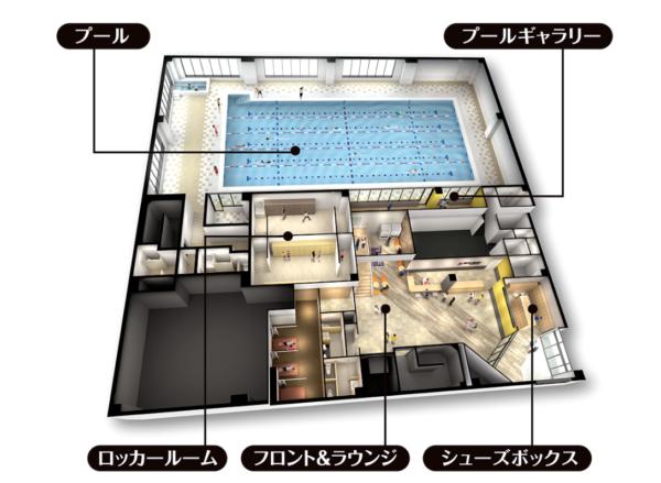 スポーツアカデミーブランチ札幌月寒1階プール