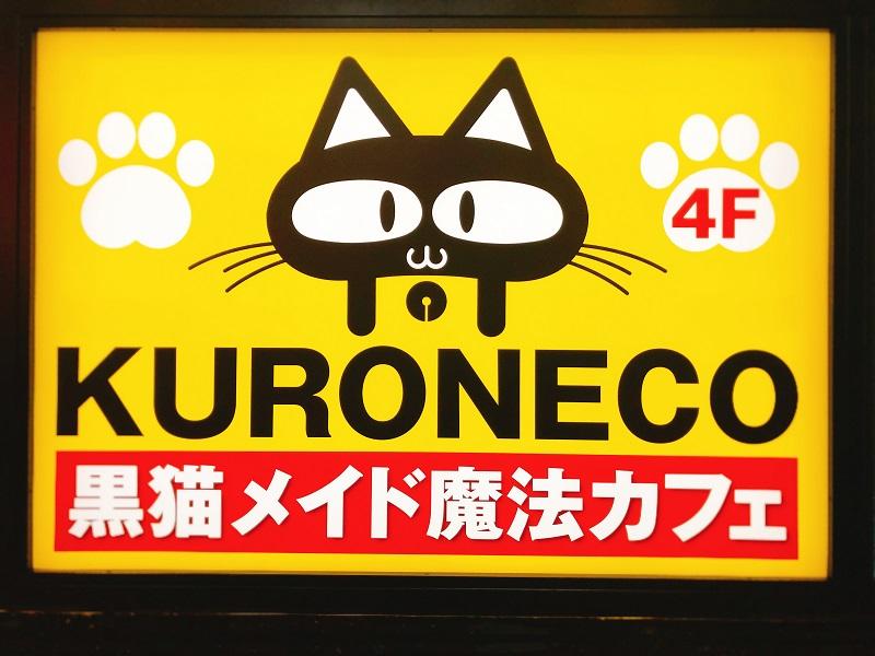 黒猫メイド魔法カフェ札幌ドンキ